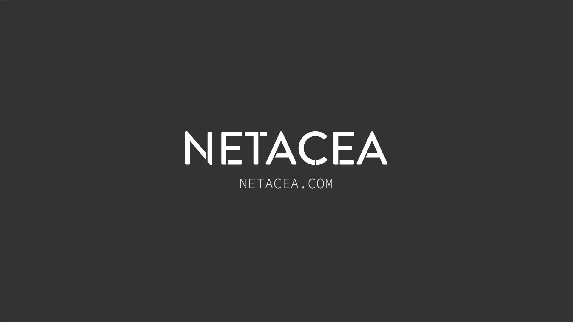 Netacea Logo and closing frame of animation