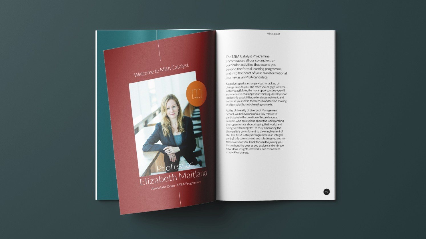 printed brand booklet to designed to explain the business
